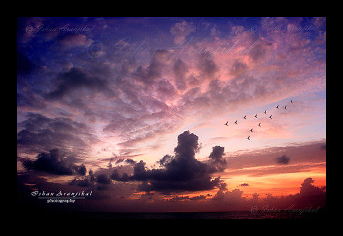morning light sunset red sea sky orange cloud india birds clouds sunrise canon dark hope dawn day darkness streak horizon faith dream kittens bombay mumbai bandstand landscpae dreamscape nightfall bandra interestingness285 explored bandrafort theunforgettablepictures 1000d canon1000d ishanaranjikal yourwonderland 13october2009