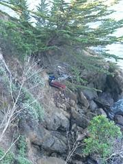 stream(0.0), trail(0.0), ridge(0.0), ravine(0.0), boulder(1.0), tree(1.0), rockfall(1.0), geology(1.0), bedrock(1.0), terrain(1.0), wilderness(1.0), rock(1.0),