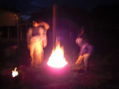 poi(0.0), fire(1.0), darkness(1.0), campfire(1.0), bonfire(1.0),