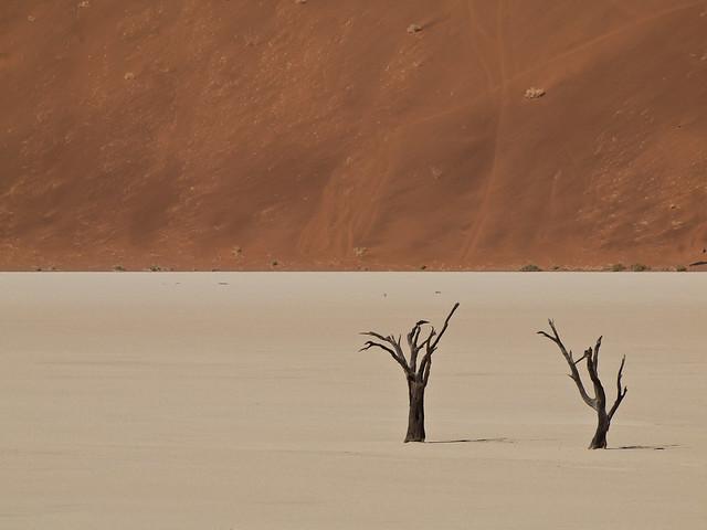 Dead Vlei, Desierto de Namib, Namibia