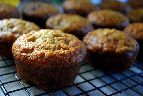 Baked: New Frontiers in Baking cookbook