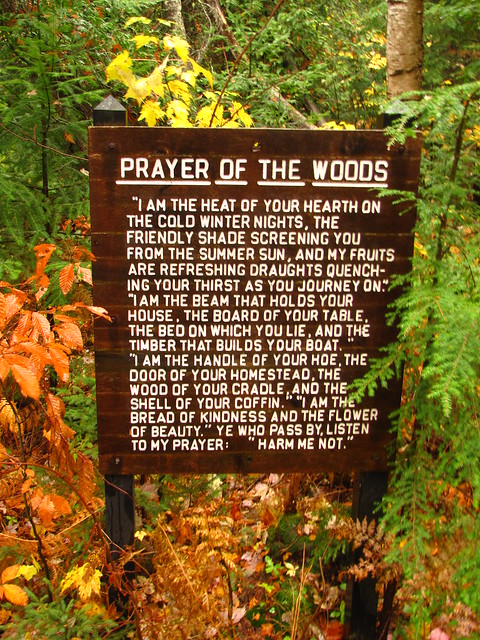 Prayer of the woods