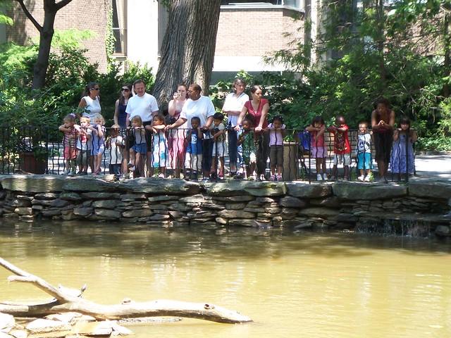 kids observing the pond
