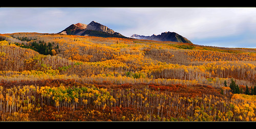 autumn trees mountain color fall clouds photo colorado sony picture panoramic fallingleaves aspens dslr mcclurepass a850 chadgalloway