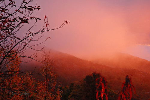 fog sunrise d70s northcarolina blueridgeparkway grandfathermountain linncove