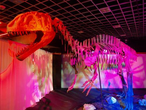 the Dinosaur Dispatch