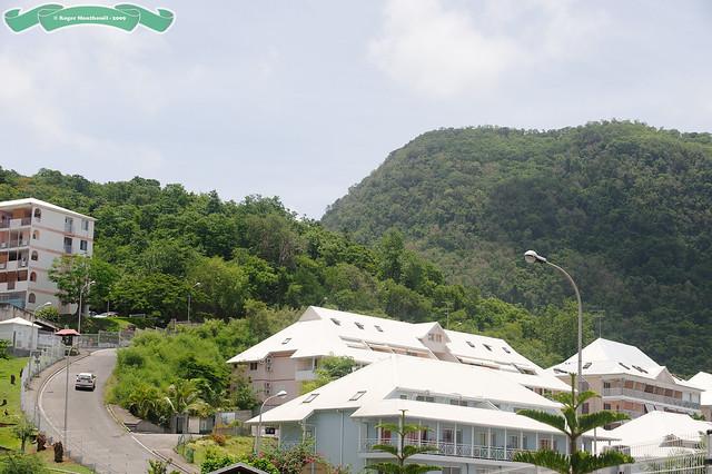 Sud Basse-Terre