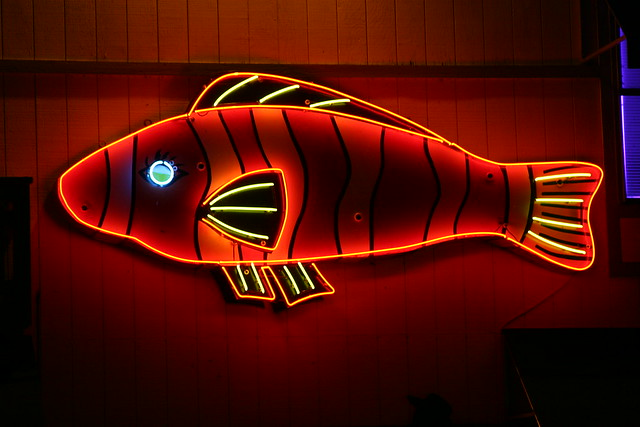 Neon fish sign flickr photo sharing for Fish neon sign