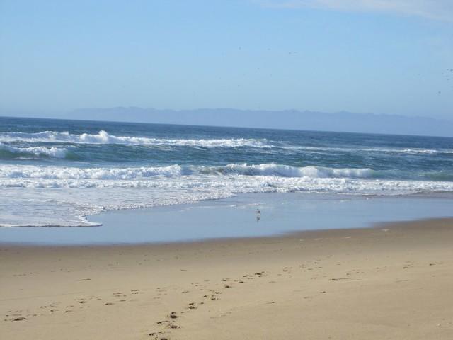 Guadalupe-Nipomo Beach