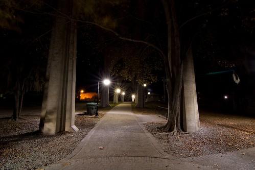 longexposure bridge tree sc night conway southcarolina sidewalk tokinaatx116prodx