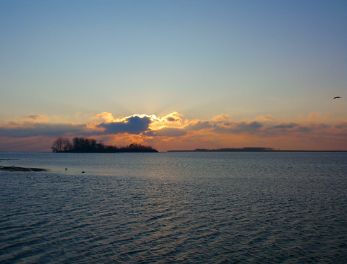 sun lake water birds clouds sunrise michigan erie