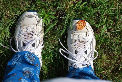Leaf on my Shoe