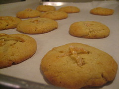 peanut butter cookie, baking, baked goods, cookies and crackers, food, dessert, cookie, snack food,