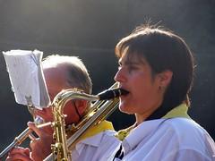 violinist(0.0), string instrument(0.0), trombone(0.0), guitarist(0.0), singing(0.0), violist(0.0), musician(1.0), trumpet(1.0), musical instrument(1.0), music(1.0), entertainment(1.0), brass instrument(1.0),