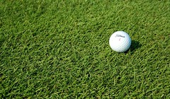 ball on Zoysia matrella at Thailand
