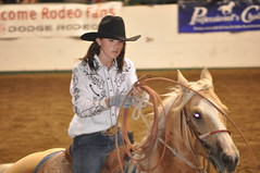 animal sports, rodeo, equestrianism, western riding, equestrian sport, sports, reining, horse, barrel racing, cowboy,