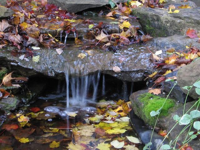 Garden Pond Waterfall Flickr Photo Sharing