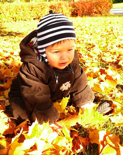 autumnboy