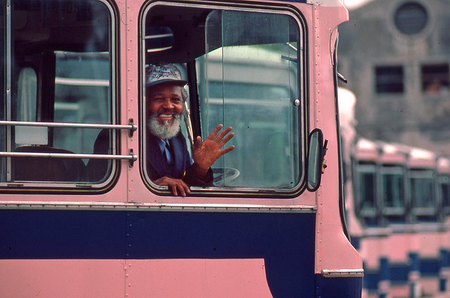 Pink Bus Driver Bermuda Flickr Photo Sharing