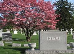 Druid Ridge Cemetery