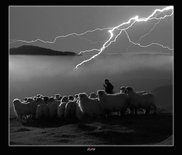 Atardecer, rebaño y tormenta