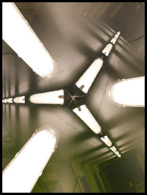 Lightspeed, Panasonic DMC-L1, LEICA D VARIO-ELMARIT 14-50mm