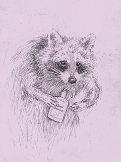 raccoon using hand sanitizer gel