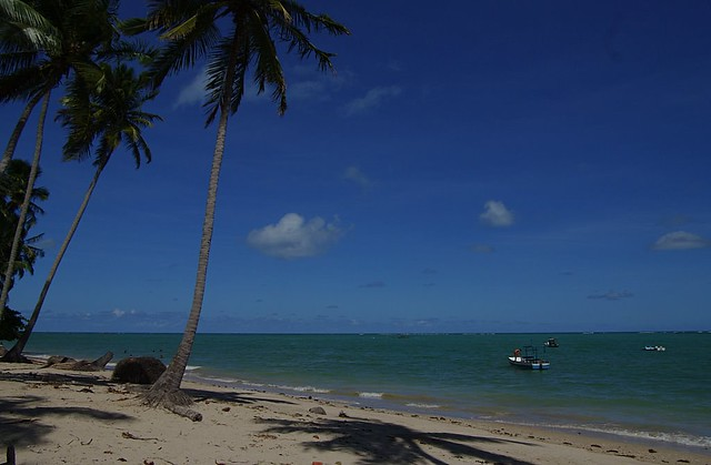 Header of Alagoas