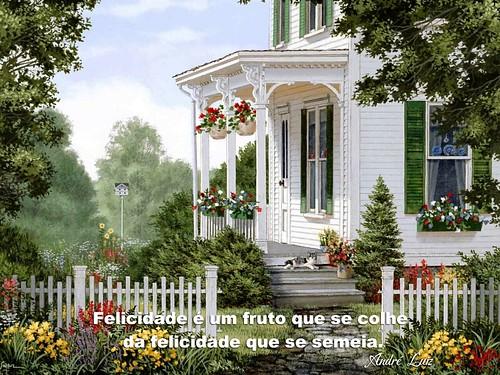Felicidade é um fruto que se colhe... André Luiz
