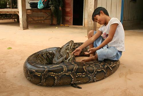 Snake boy in Cambodia