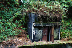 Spooky old Hut
