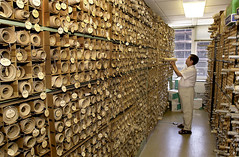man examining archives