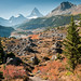 Trail to Mount Assiniboine