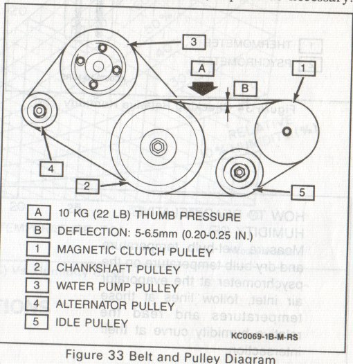 serpentine belt diagram