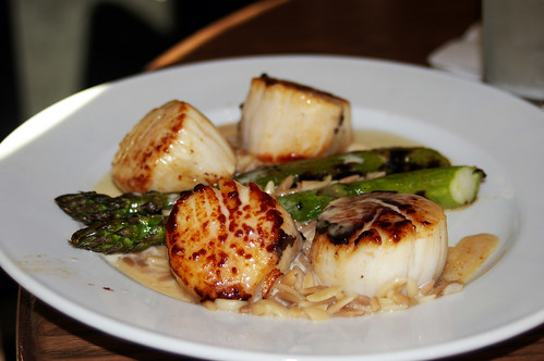 scallops at level