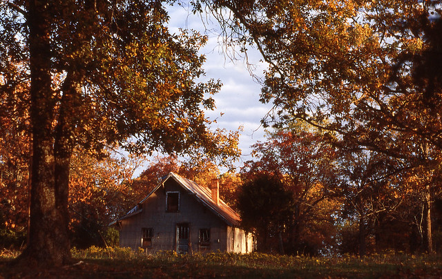 House In Autumn Woods