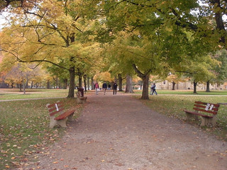 Kenyon College, Middle Path, Fall 2009, 02