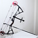 "Small photo of Bowtech ""Admiral"" Compound Bow"