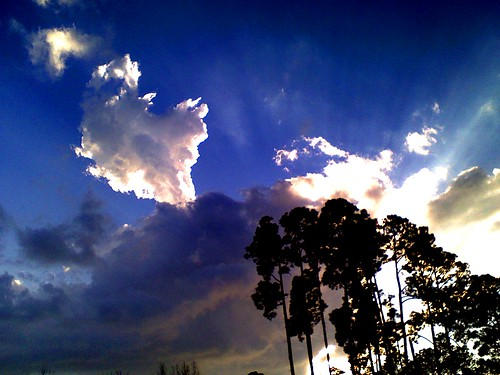 Bold Clouds and Sunlight