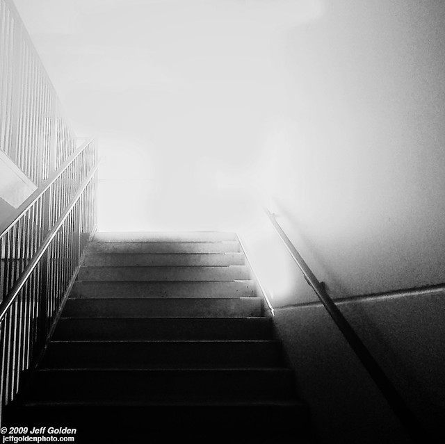Step Into The Light And Let It Go: Flickr - Photo Sharing