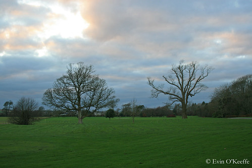 Ballymaloe Grounds