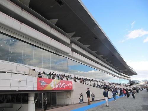 中山競馬場の一般席を見上げる