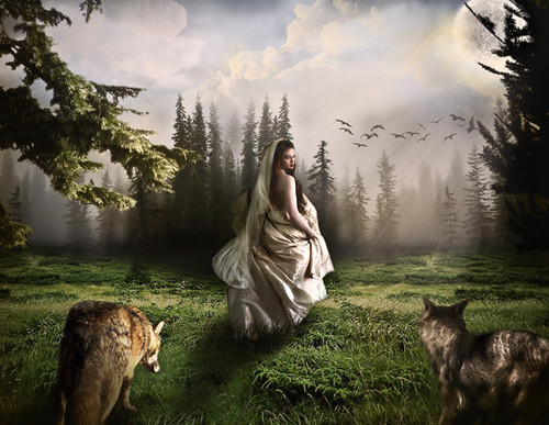Fantasy Wolf Univers Photomontage