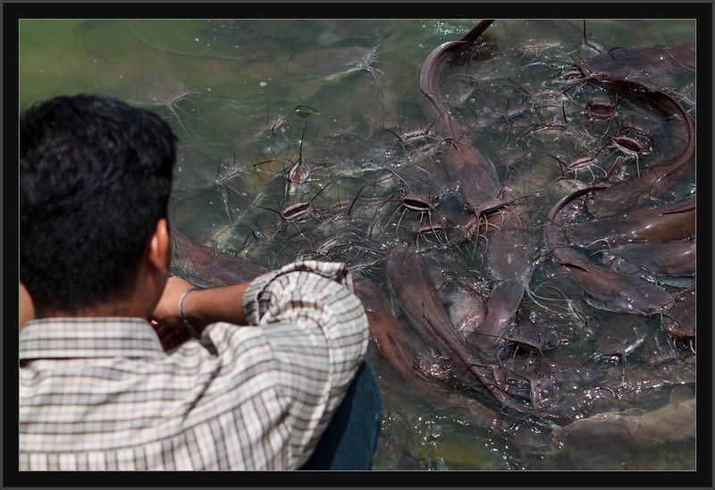 2009_08_Chennai IMG_0264
