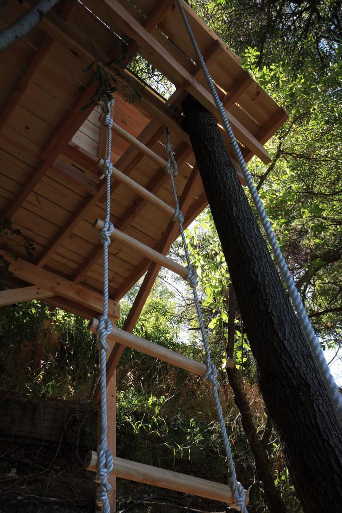 Tree House - 5