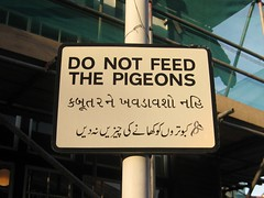 Multilingual sign by our library