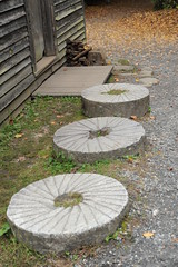 backyard, yard, flagstone, road surface, walkway,