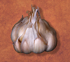 garlic by Muffet, on Flickr