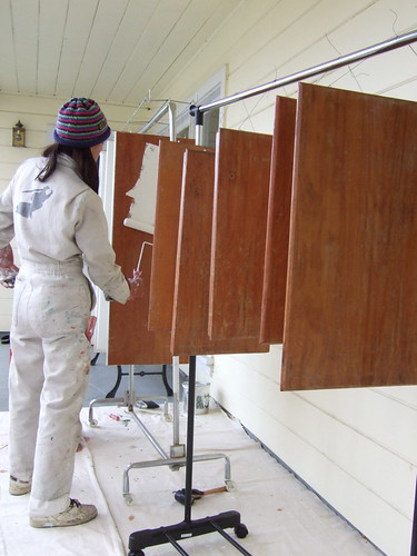 Kitchen Cabinet Spraying Racks