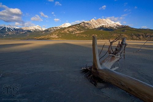 Jasper Lake is missing
